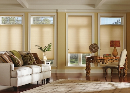 Best Window Coverings