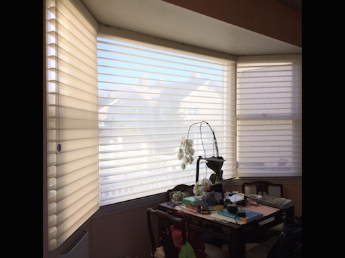 Best Hunter Douglas Window Treatments
