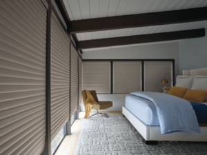 Energy-Efficient Window Shades