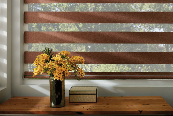 2018 Spring Hunter Douglas Window Shade