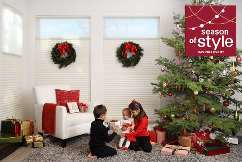 Rebate on the best blinds for your windows including Duette window shades