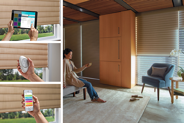 Blackout shades with PowerView Motorization
