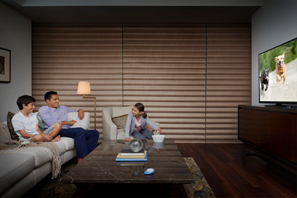 Hunter Douglas room darkening window shades